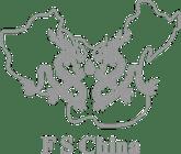 FS-China-logo