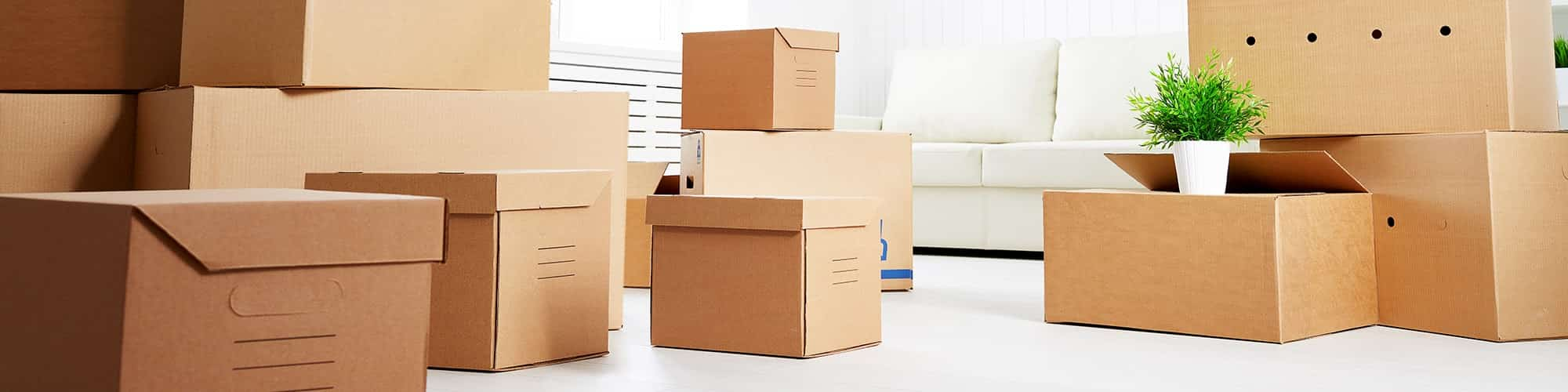 carton-boxes-international-move